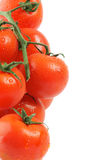 Frame of Tomatoes on twigs. With droplets isolated on white background Stock Image