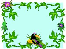 Frame of Toucan, Plants, and Hibiscus Stock Images