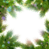 Frame of tree branches. EPS 10 Stock Images