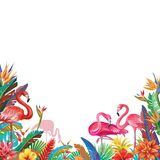 Frame from tropical flowers and Flamingoes Stock Photo