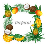 Frame with tropical fruits and leaves. Design for advertising booklets, labels, packaging, menu Stock Images
