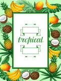 Frame with tropical fruits and leaves. Design for advertising booklets, labels, packaging, menu Royalty Free Stock Images