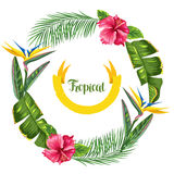 Frame with tropical leaves and flowers. Palms branches, bird of paradise flower, hibiscus Stock Photo