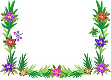Frame of Tropical Plants, Dragonfly, and Butterfly Stock Image