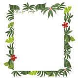 Frame with tropical plants Royalty Free Stock Images