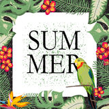 Frame with tropical plants and parrot. Royalty Free Stock Images