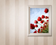 Frame with tulips Stock Image
