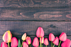 Frame of tulips on dark rustic wooden background. Spring flowers Royalty Free Stock Photo