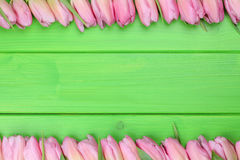 Frame from tulips flowers in spring or mothers day with copyspac. E for your own text Stock Images