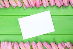 Frame from tulips flowers in spring or mothers day with greeting Royalty Free Stock Images