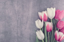 Frame of tulips onstone background with copy space for message. Spring flowers. Greeting card for Valentine`s Day, Woman`s Day and Mother`s Day. Top view royalty free stock photo