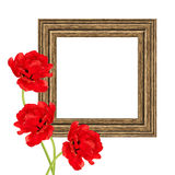 Frame with tulips Royalty Free Stock Image