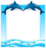 Frame. Of two dolphins and sea water Stock Photo