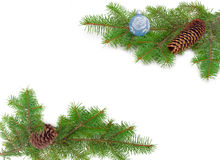 Frame of two fir branches Royalty Free Stock Image