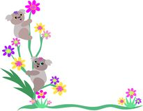 Frame of Two Koala Bears on Flowers Stock Photos