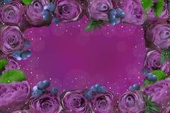 Frame van bloemen royalty-vrije stock foto's