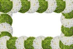 Frame van bloemen Royalty-vrije Stock Afbeeldingen