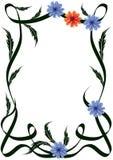 Frame van bloemen Stock Foto's