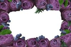 Frame van bloemen PNG royalty-vrije stock foto