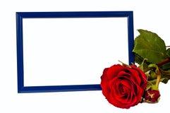 Frame van de foto met rood nam toe Stock Afbeeldingen