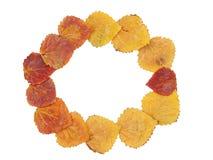 Frame van de herfstbladeren Royalty-vrije Stock Afbeeldingen
