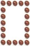 Frame van Geïsoleerdr macrobeeld van ruwe kastanjes Royalty-vrije Stock Foto's