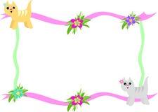 Frame van Katten en de Bloemen van de Hibiscus Stock Foto's