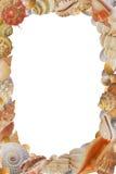 Frame van overzeese shell royalty-vrije stock fotografie