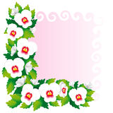 Frame van pansies Royalty-vrije Stock Fotografie