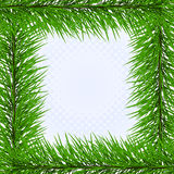 Frame van pijnboom vector illustratie