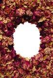 Frame van rozen stock foto