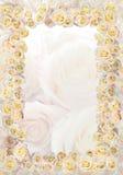 Frame van rozen stock afbeeldingen