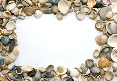 Frame van shells Royalty-vrije Stock Afbeeldingen