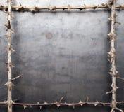 Frame van stekelige droge takken stock fotografie
