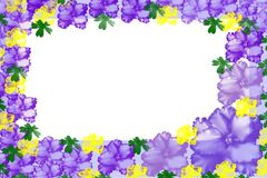 Frame with varicolored violas Royalty Free Stock Photo