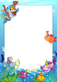 Frame with various fish. To be used as notice, photobackground or invitation for party or birthday Stock Image