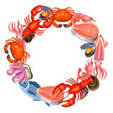 Frame with various seafood. Illustration of fish, shellfish and crustaceans Stock Image