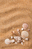 Frame from various shells on sand. Frame from the various shells on sand Royalty Free Stock Images