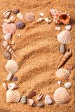 Frame from various shells on sand Royalty Free Stock Photo