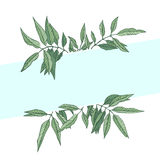Frame of vector leaves vector illustration