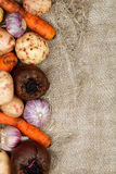 Frame of Vegetables Royalty Free Stock Photos