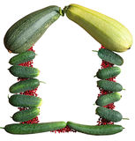 The frame is vegetables. The frame is berry and vegetables royalty free stock photos