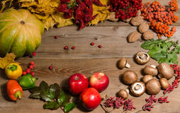 Frame from vegetables, nuts, berries and  fruits Royalty Free Stock Photography