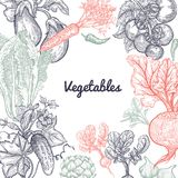 Frame of vegetables and space for text. Stock Images