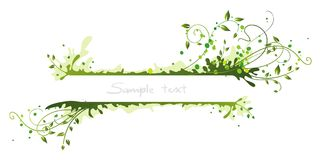 Frame verde Fotos de Stock Royalty Free