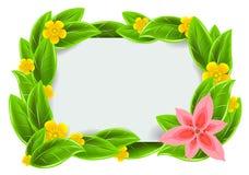 Frame verde com folhas Fotografia de Stock Royalty Free
