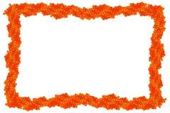 Frame vermelho isolado do caviar imagem de stock