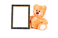 Frame vert bear left Royalty Free Stock Images
