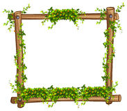 Frame with vine and flowers Royalty Free Stock Images