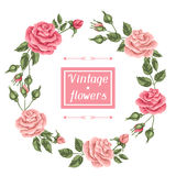 Frame with vintage roses. Decorative retro flowers. Royalty Free Stock Photos